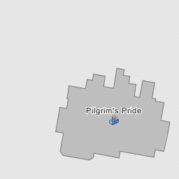 Pilgrim S Pride Waco Texas